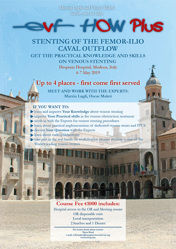 Modena-Flyer-Stent-Course-2019